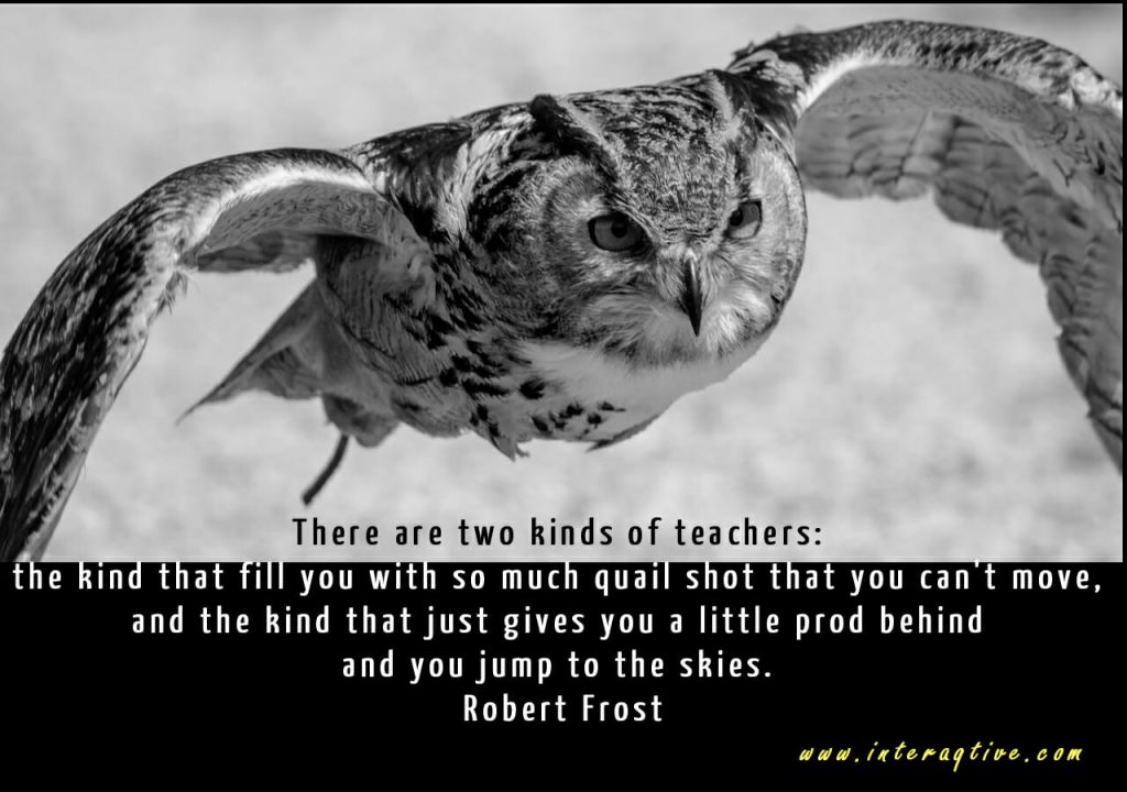 Two kinds of teachers - inspirational quotes