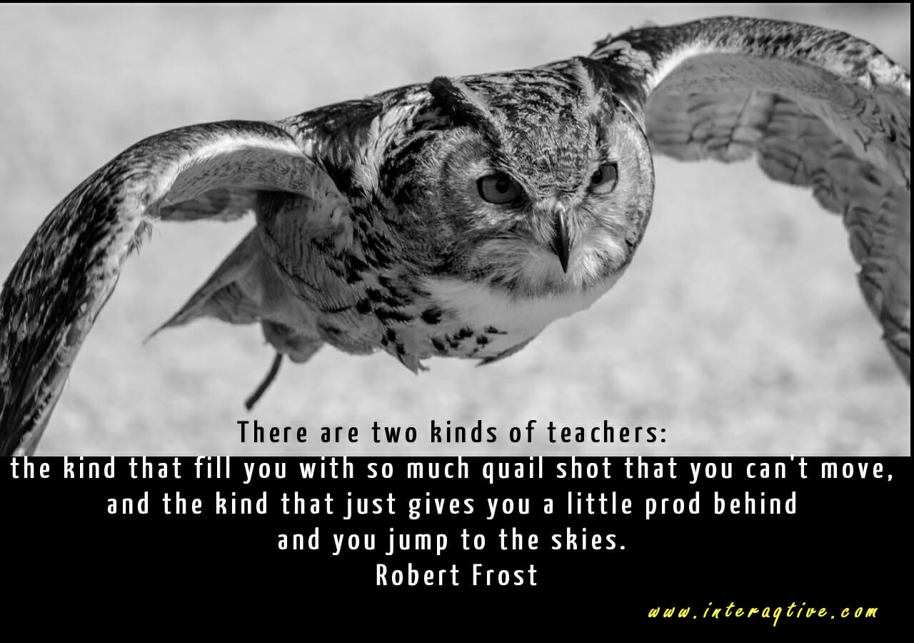 Two kinds of teachers – inspirational quotes
