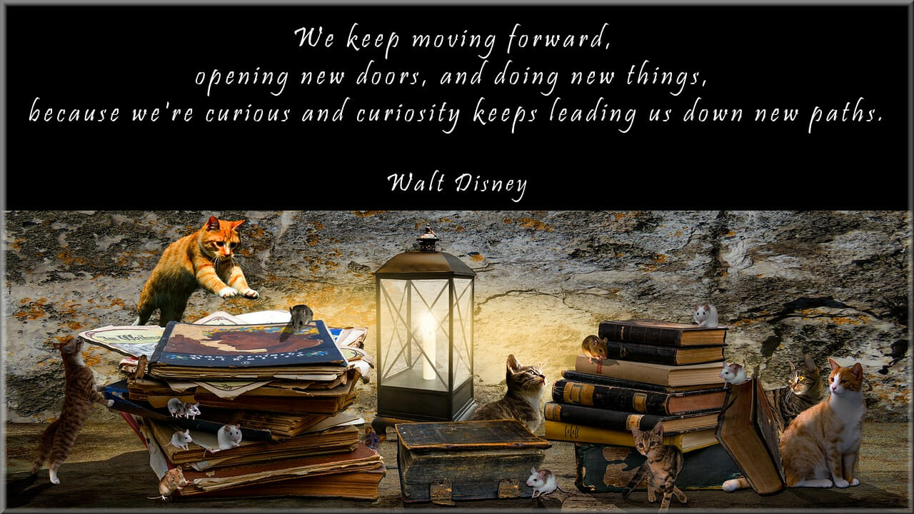 Interactive Books with a Q Part 4 – Curiosity and Learning